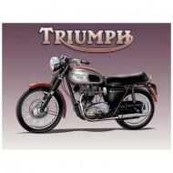 10909 Triumph copy