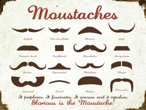 Mustache Chart Original Metal Sign Company