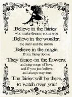 Believe Fairies