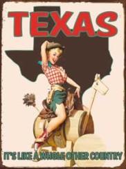 20763-Texas-Pin-Up