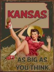 20768-Kansas-Pin-Up
