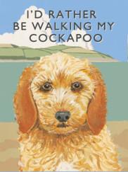 8087-cockapoo-walking