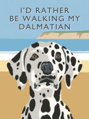 8091-dalmatian-walking