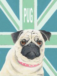 8105-Pug-Green