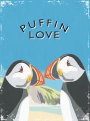 8110-puffins
