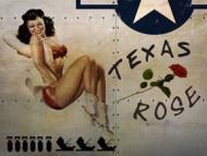 5762-Texas-Rose