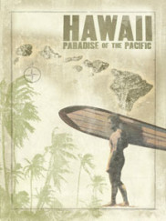 5068-Hawaii-Map-Surfer