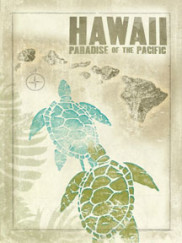 5069-Hawaii-Map-Turtle